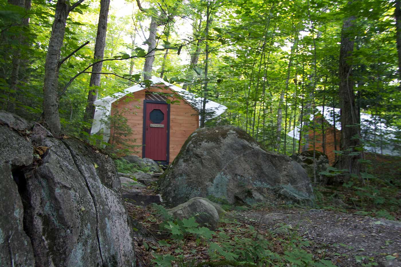 Cabin sitting in the middle of a forest